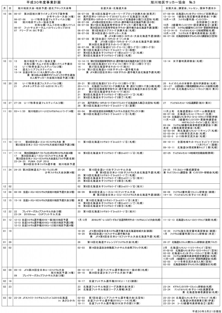 20180321_afa_business_plan-3